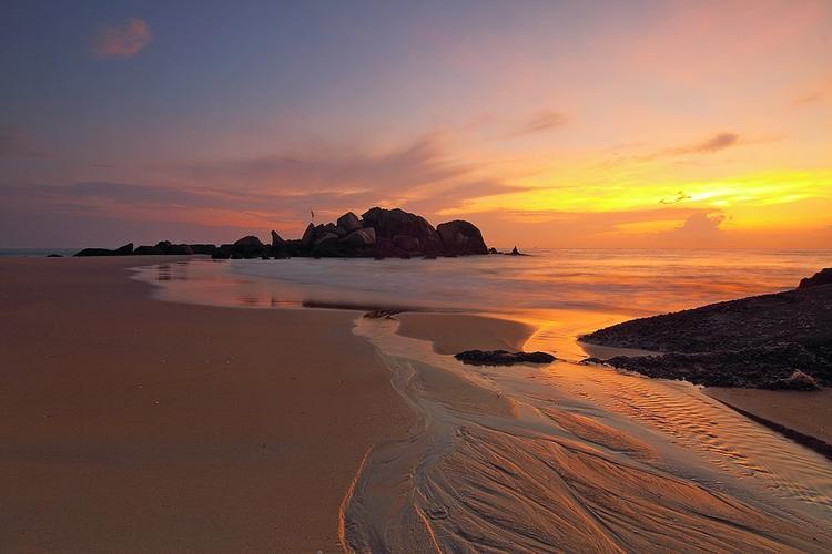 На австралийском пляже нашли существо, напоминающее человеческий мозг