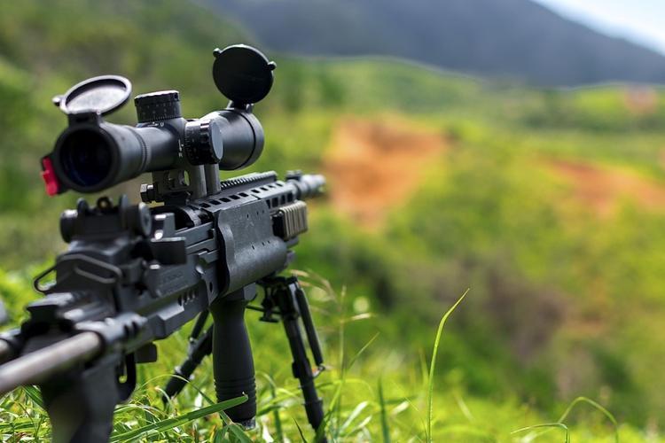 Украина надеется в ближайшее время получить из Канады снайперские винтовки