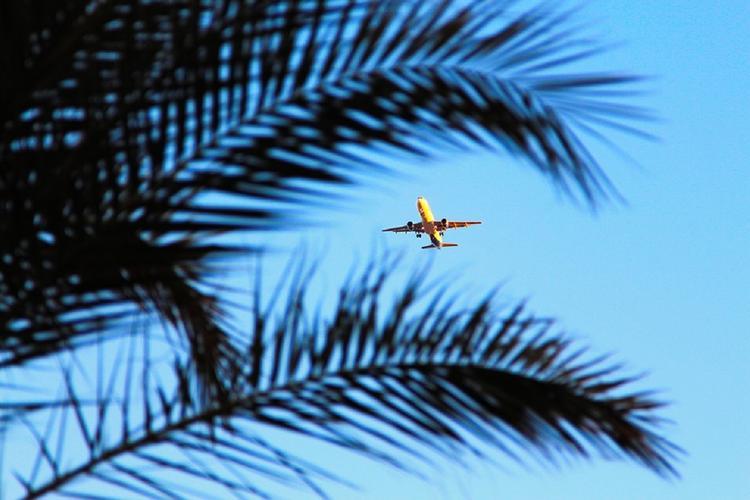 Появилась видеозапись с места загоревшегося в Египте украинского самолета