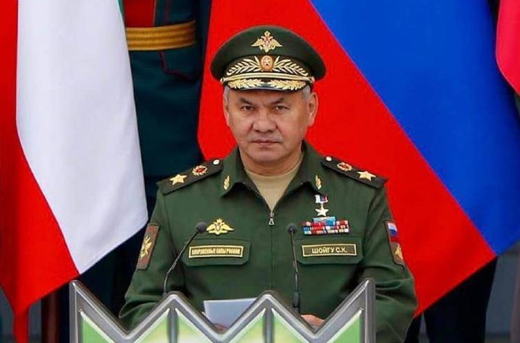 JIT подозревает Шойгу в причастности к гибели рейса MH17 на Донбассе