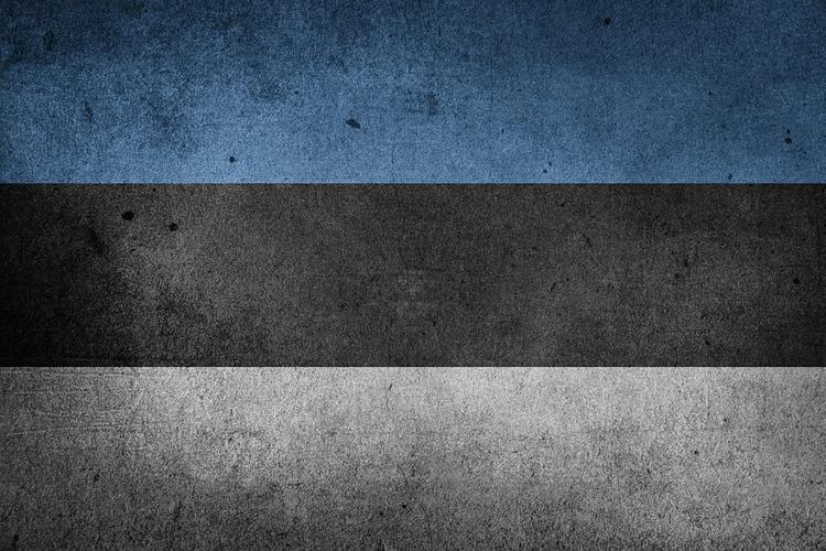 """Российское посольство призвало эстонского депутата """"вылезти из танка"""""""