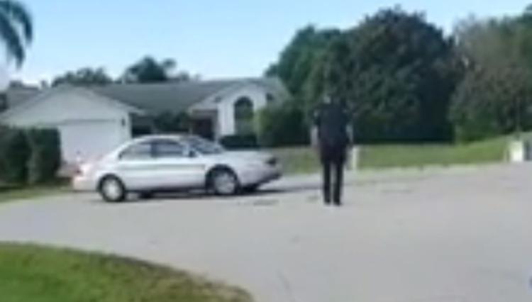 В США собака целый час каталась за рулем машины