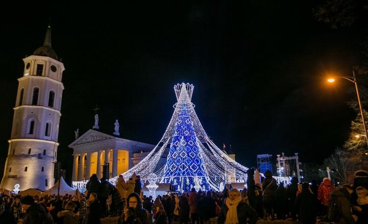 В Вильнюсе зажгли рождественскую елку!