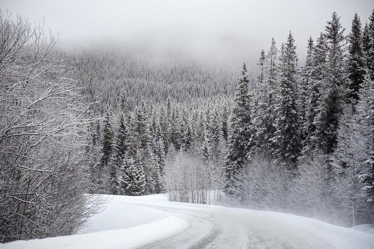 Дорогу из Грузии в Россию закрыли из-за снега