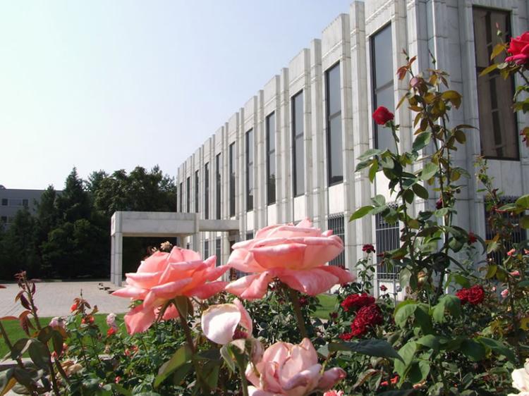 Посольство РФ ответило на осуждение США закона об иноагентах
