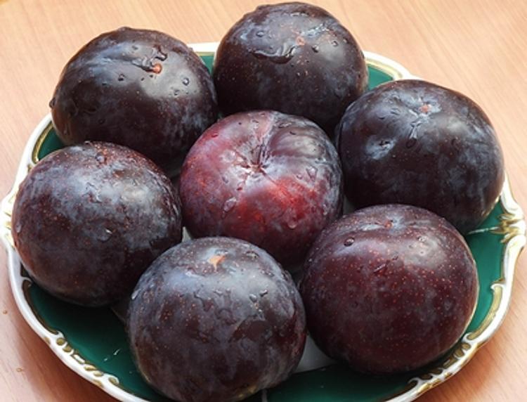 Названы полезные фрукты с косточкой, необходимые в рационе людей