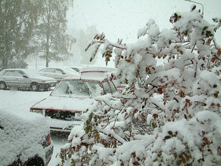 Гидрометцентр прогнозирует  декабрь  в  России