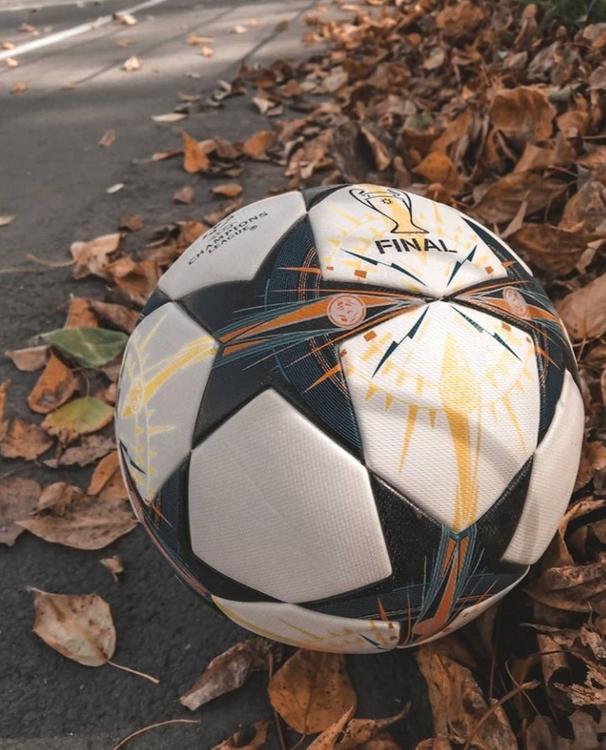 ВЦИОМ: треть россиян собирается следить за ходом футбольного Евро-2020