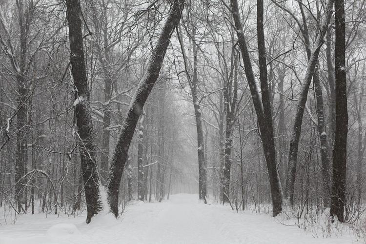 Эксперт: ноябрь в Иркутской области выдался холоднее обычного