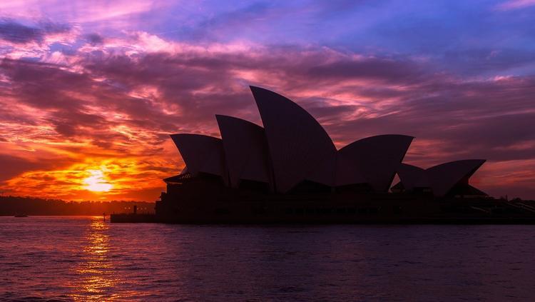 Австралия: густой дым от лесных пожаров накрыл Сидней и Канберру