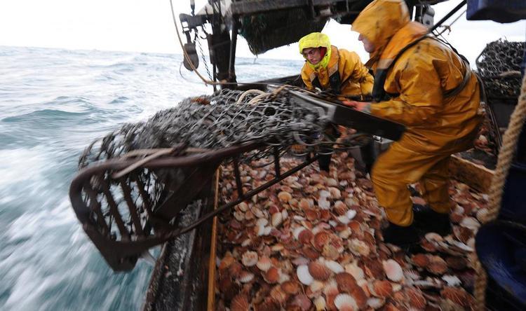 Лондон готовится к войне за рыбу