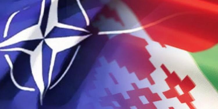 Белоруссия намерена провести совместные военные учения с НАТО