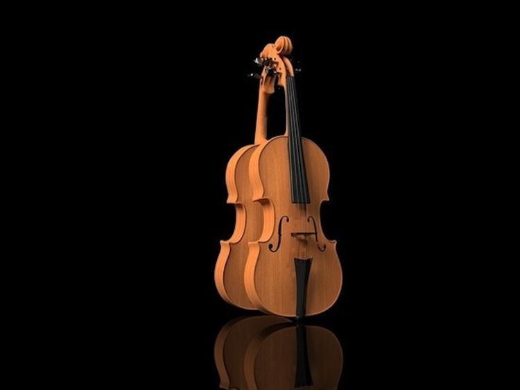 Конфискованную на границе скрипку XIX века передадут в Нижегородский музей-заповедник