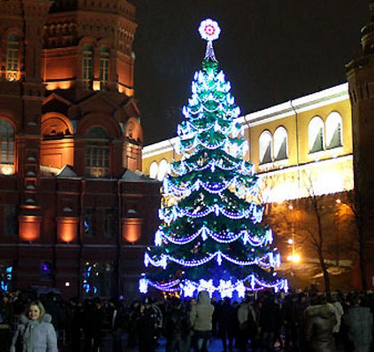 Новогодняя кража в Воронеже