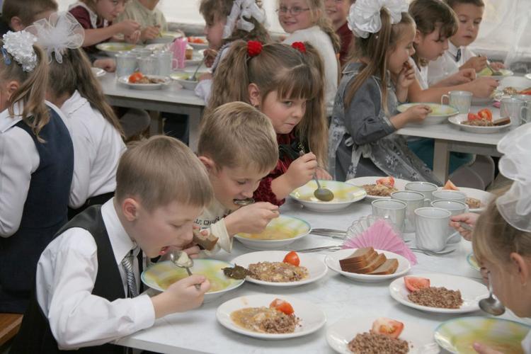 В Тольятти в детские сады и школы поставляли мясо животных, зараженных трупным ядом
