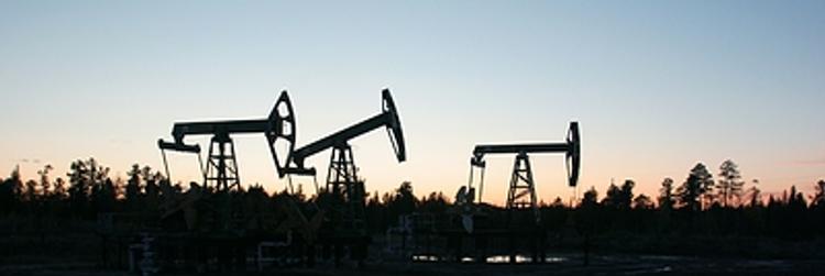 Лукашенко поручил   в ближайшие дни начать альтернативные поставки нефти