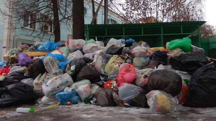 Во Владимире мусорный коллапс после новогодних праздников. Власти же не знали, что в России будет Новый год