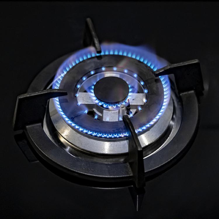«Турецкий поток» значительно расширит возможности газоснабжения Кубани