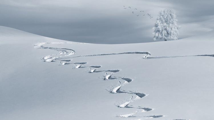 Синоптики: снегопад не покинет Москву до вечера субботы