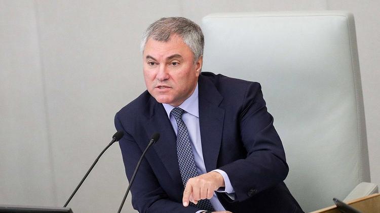 В Госдуме предложили наказать Водонаеву за оскорбление общества по закону и взыскать 100 млн руб.