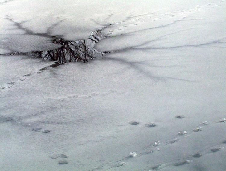 В Новгородской области двое мужчин провалились под лед и погибли