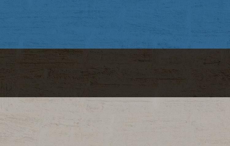 В ГД прокомментировали обвинения спикера парламента Эстонии в адрес России