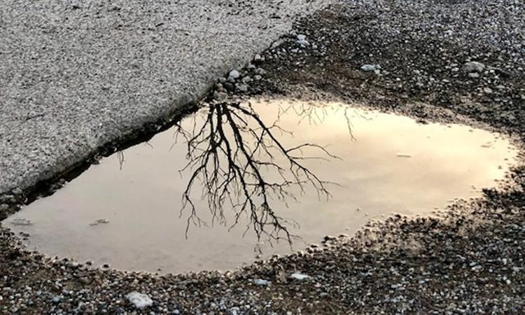 Водохранилище в Симферополе  высохло:  наполненность водой 37%
