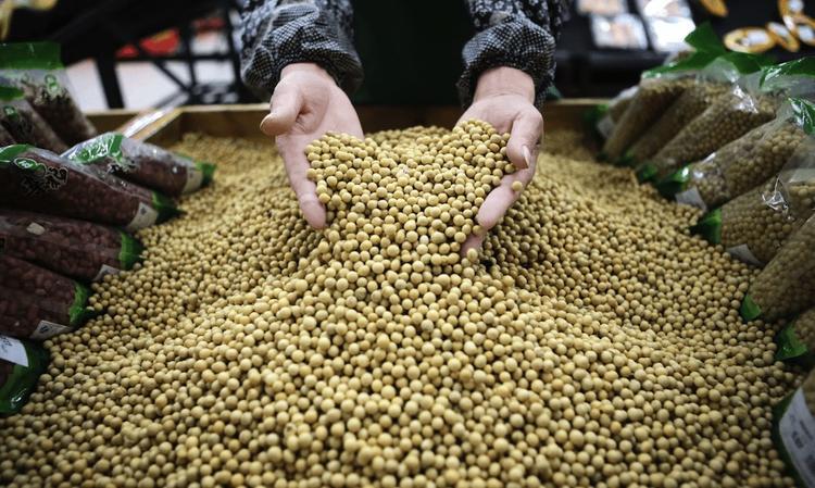 Угрозы продовольственной безопасности страны только растут