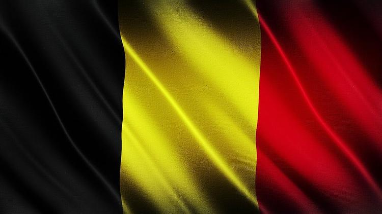 Бельгия на месяц стала новым председателем Совбеза ООН