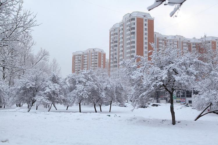 Аномально низкое атмосферное давление зафиксировали сегодня в Москве