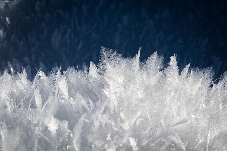 На этой неделе в Москве ожидаются морозы до минус 10 градусов