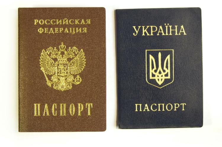 В Совфеде оценили выдачу паспортов гражданина ЛНР