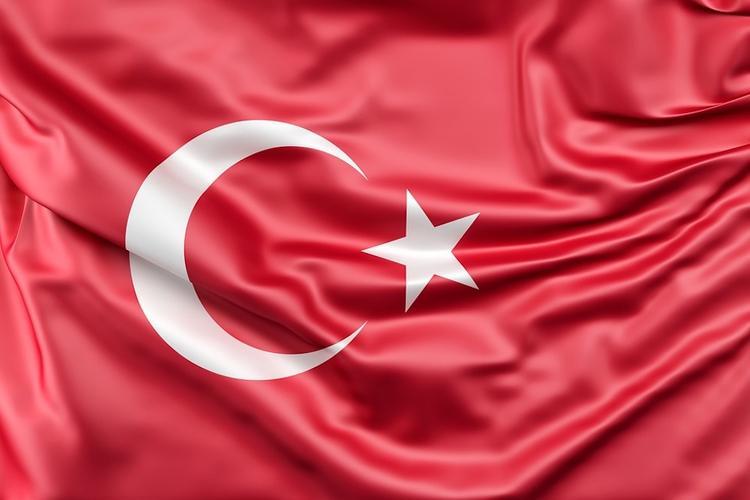 В Турции после получения угроз в адрес посла усилили охрану посольства России