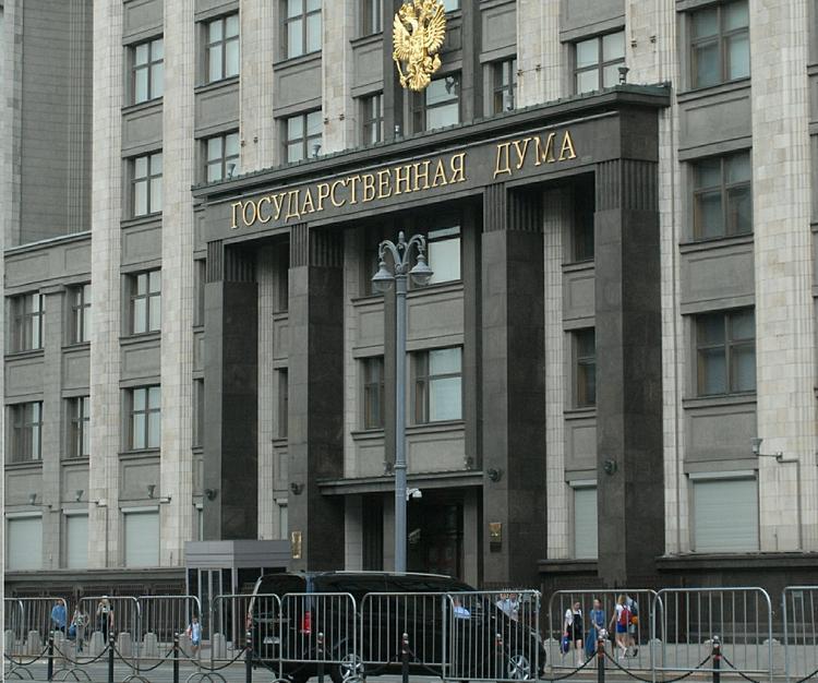 В ГД предложили закрепить в Конституции РФ запрет на аборты и