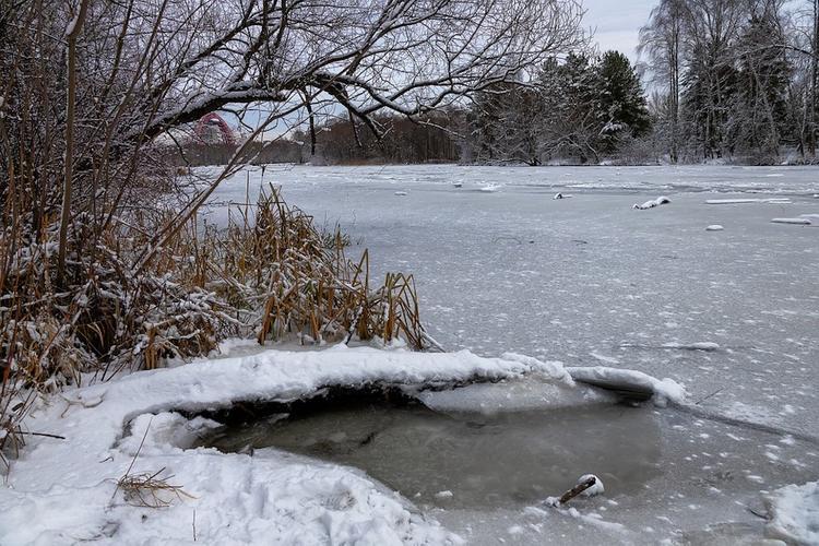 В Тульской области ребенок провалился под лед водоема в парке и утонул