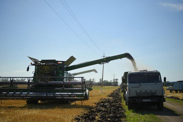 Российских аграриев обещают поддержать на законодательном уровне