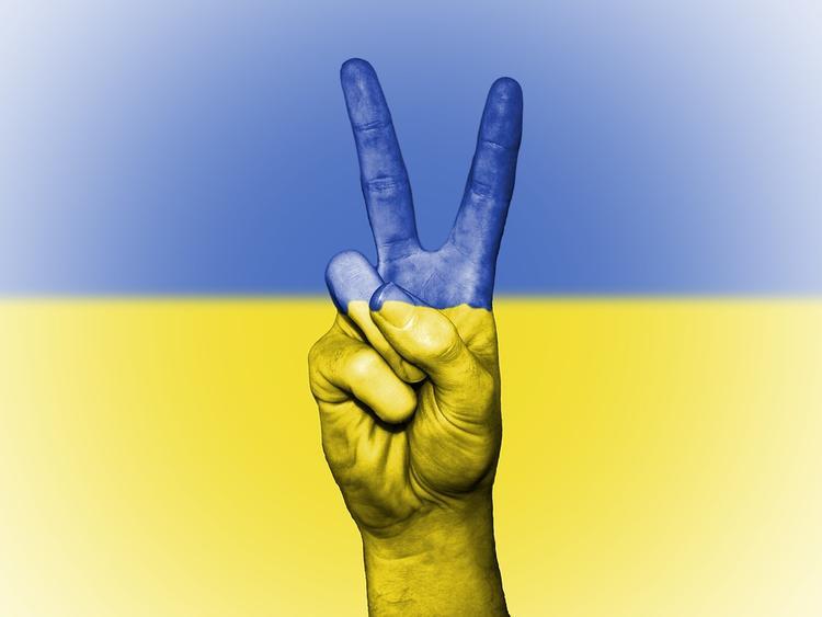 На Украине предложили изъять советские книги из библиотек
