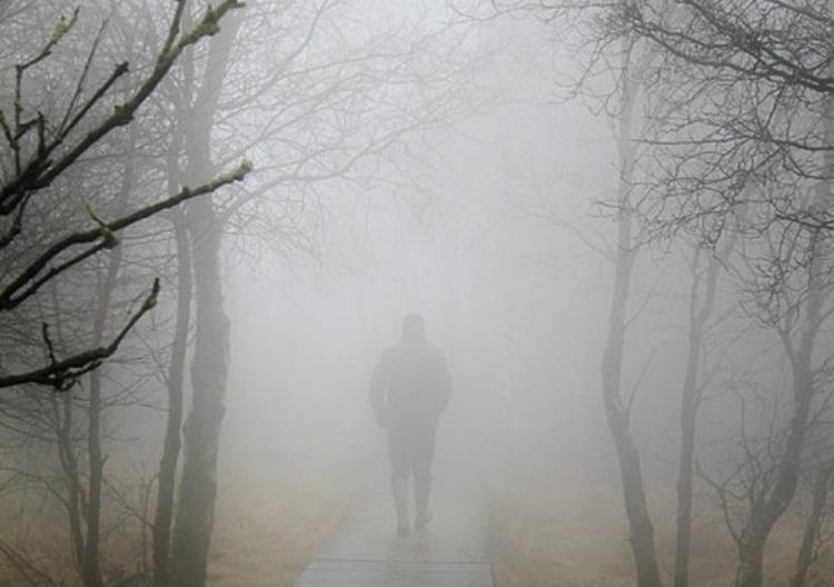 МЧС предупредило о тумане в Москве и Подмосковье