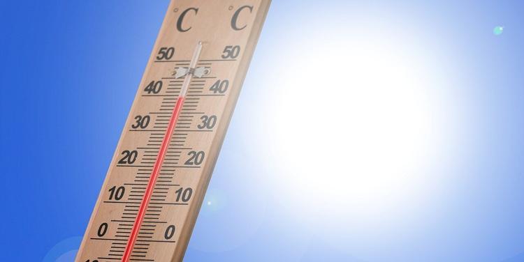 Синоптик рассказала о погоде  в Москве на выходные
