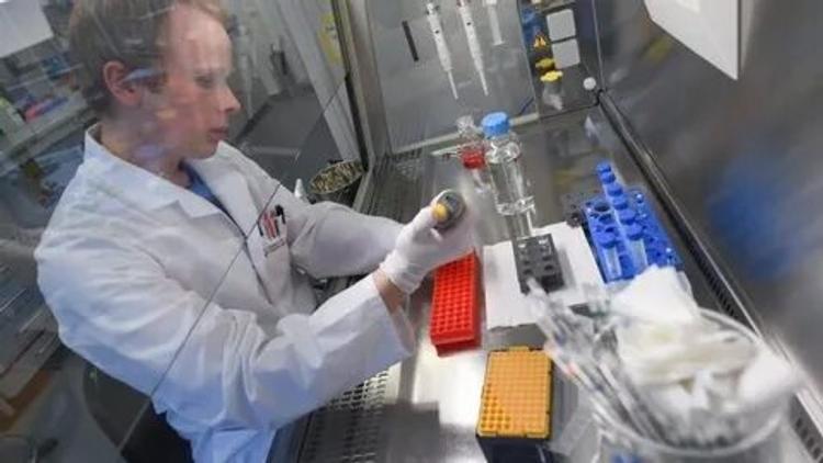 Глава ВОЗ признал изоляцию бесполезной в борьбе с коронавирусом, и перечислил меры, которые помогут справиться с ситуацией