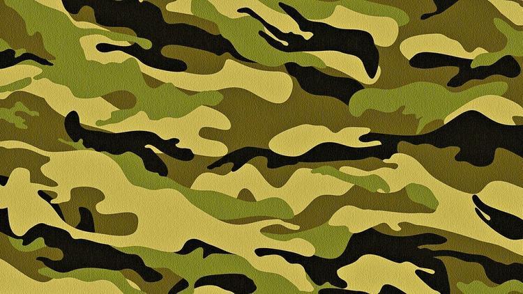 В Санкт-Петербурге приостановлен призыв в армию