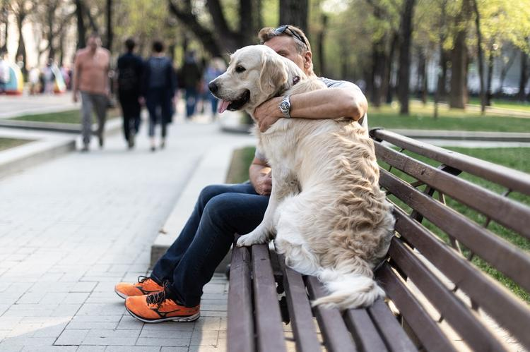 В Москве задержан гулявший с собакой мужчина