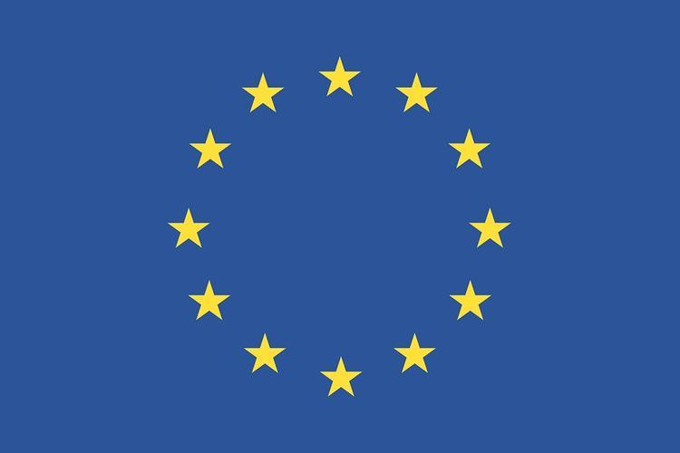 Российский эксперт оценил последствия пандемии для государств Евросоюза