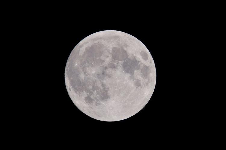 Савельев прокомментировал попытки Трампа экспроприировать  территорию Луны