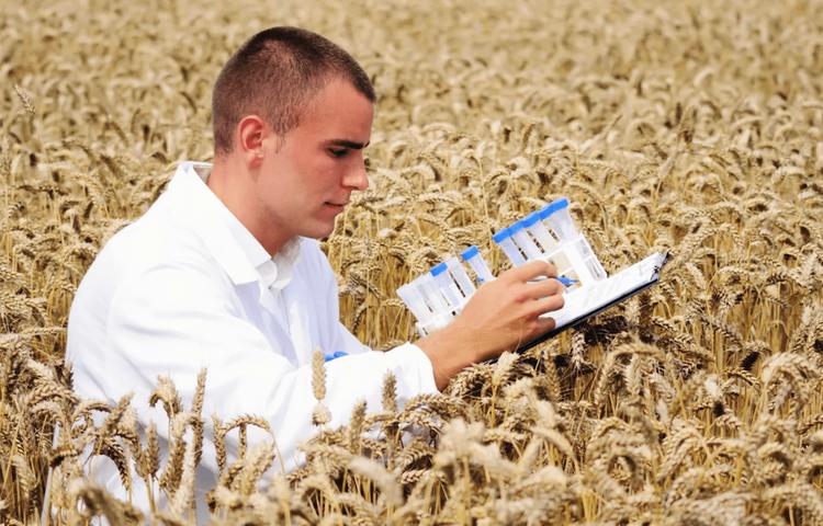 Сельхознаука: приказано добить?