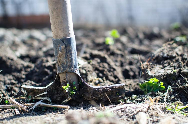Зеленский подписал закон о рынке  сельскохозяйственых земель