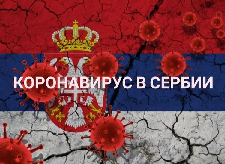 Эпидемия  в Сербии: помощь России и открытие границ