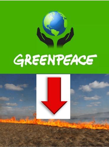 Экологи доказали, что статистика по природным пожарам в России существенно занижена
