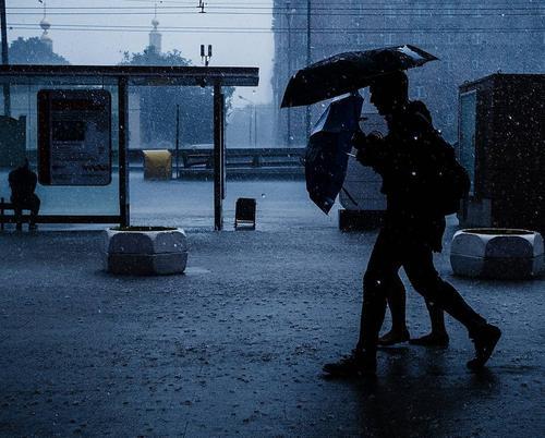 В ближайшие часы в Москве начнется сильный дождь с грозой