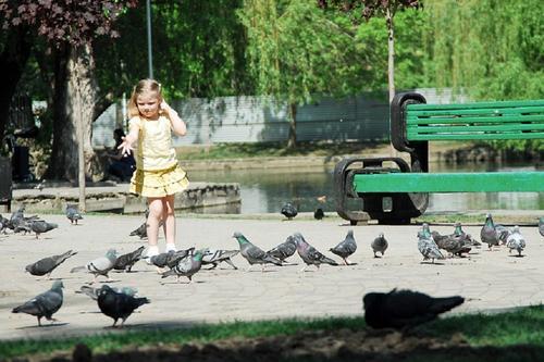 В Краснодарском крае в субботу открываются парки и набережные